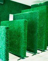 варианты зеленого ограждения