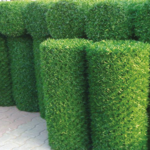 "Зеленый забор LO - Фото № ""2"""