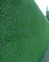 забор зеленый с травы