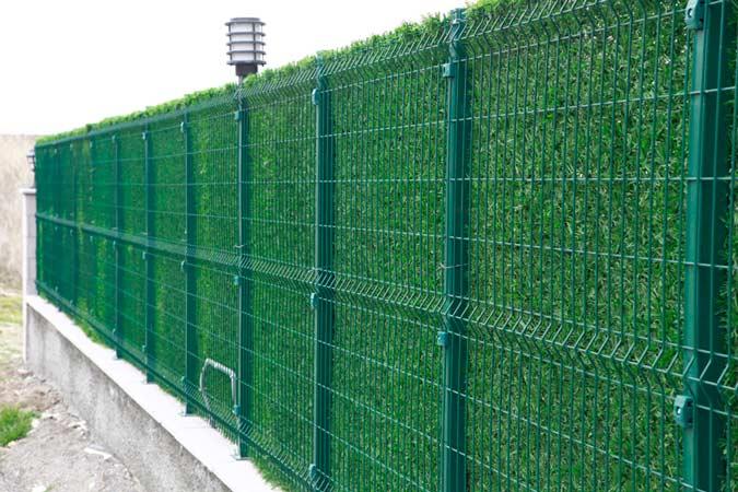зеленое продуваемое ограждение